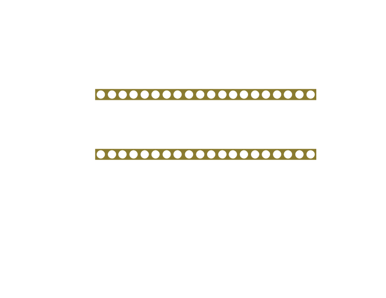 The New York Acting School for Film and Television